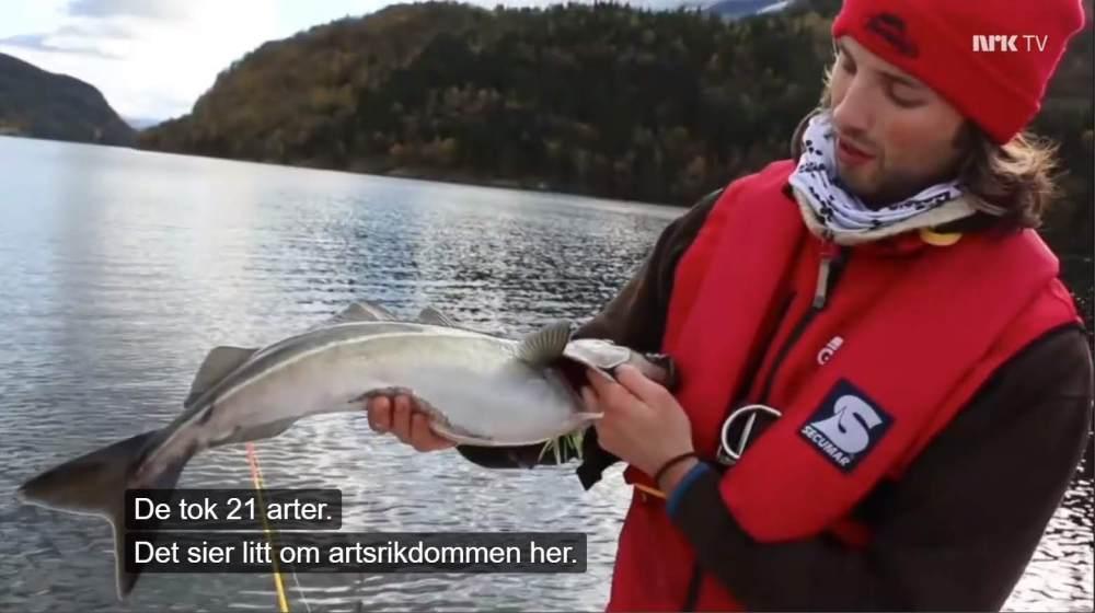 Førdefjorden_NRK2